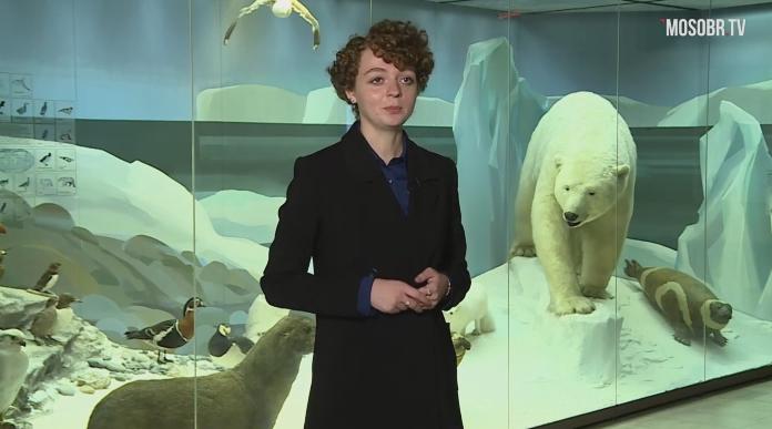 Урок биологии  в Государственном Дарвиновском музее