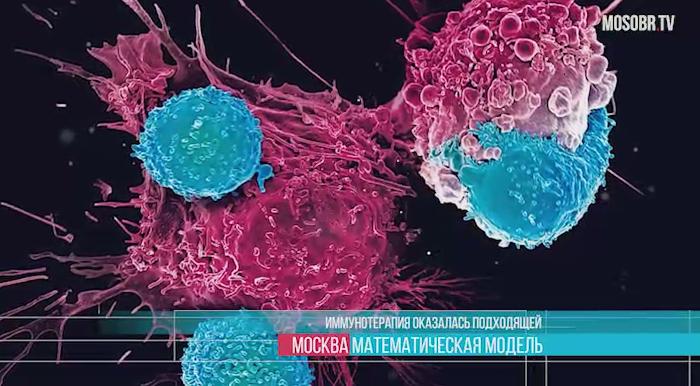 Иммунные клетки